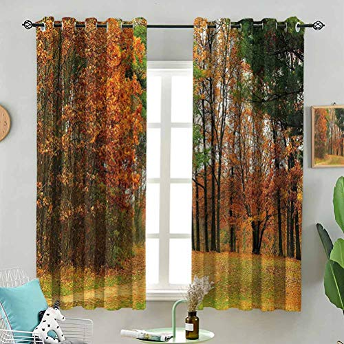 Blackout Window Curtain Cloudy Day in September W72 x L96 Inch (2 Panels) for Indoor Living Dining Room Bedroom