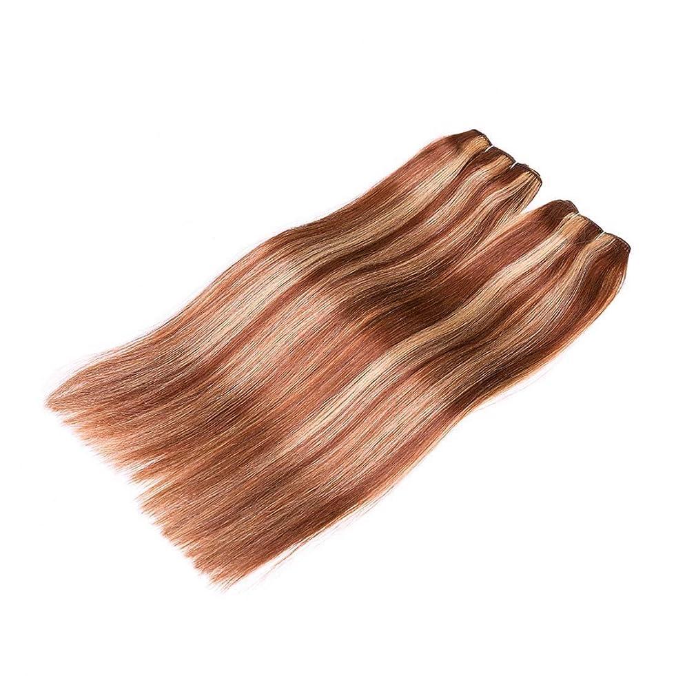 さようならホップ反毒JIANFU 髪カーテン レアルヘア ストレートヘア ミックスカラー ウィッグカーテン レディース ノットなし 染める可能 (サイズ : 20inch)
