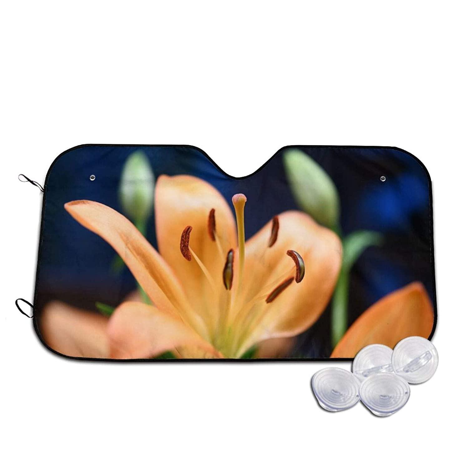 Car Windshield Recommendation Sunshade Lily 5 ☆ very popular Protection Keep to Vehicle Cool The