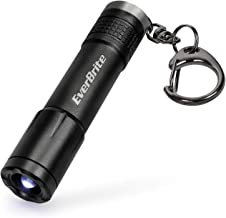EverBrite Keychain Flashlight Mini LED Key Ring Light Torch For Camping Dog Walking Reading Emergency with Durable Battery, Water Resistance, Black