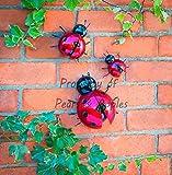 Adorno metálico para pared de jardín, decoración de jardín, para colgar, diseños de mariquita y abeja, 3 unidades, Ladybugs