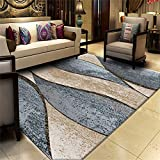 QALLP Contemporary Designer Rug Clásico Simple Retro Traditional Living Room Rugs Modern Decorative Area Carpet Soft Non Slip Antifouling Durable Rug for Kitchen Rugs Room Yoga Mat 160x230cm R7379