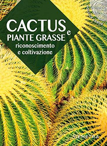 Cactus e piante grasse. Riconoscimento e coltivazione