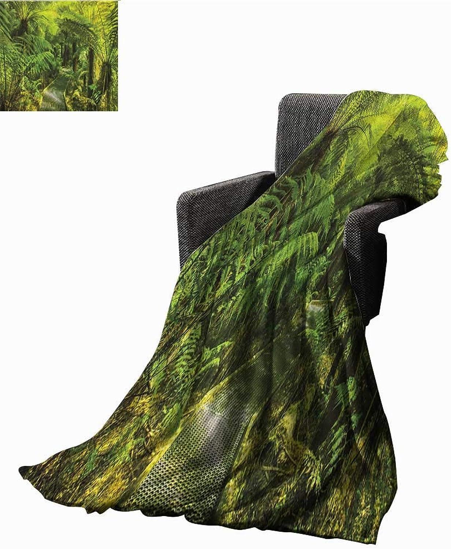 WilliamsDecor Bed or Couch 60  x 35 Rainforest Lightweight Blanket Rainforest Walkway Board Ferns Wet Rural Spring Traveling Destination Nature Zen Print Summer Quilt Comforter Green