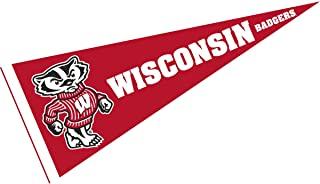Wisconsin Badgers Bucky Badger Logo Pennant