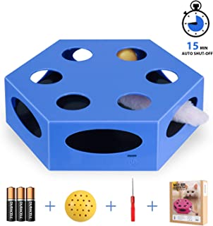 WingPet Interactive Cat Toys - Automatic Cat Exercise Teaser Toy with Worm Tail & Catnip Ball Random Rotating, Pet Kitten Toys for Entertainment Play (Auto Off Timer, Battery Included)