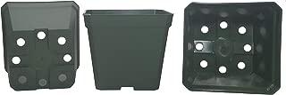 DILLEN 50-Pack, Square Nursery Pot Plastic Pots for Plants, 4 Inch. Color: Green