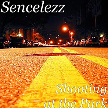 Shooting at the Park