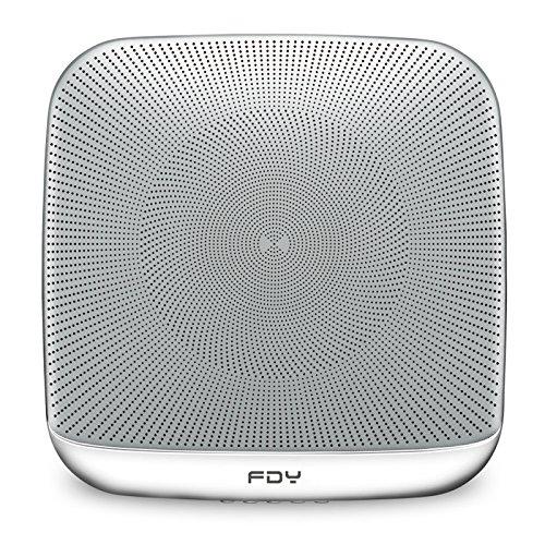 Bluetooth Speakers Fdy Multi Room Wall Buy Online In Faroe Islands At Desertcart