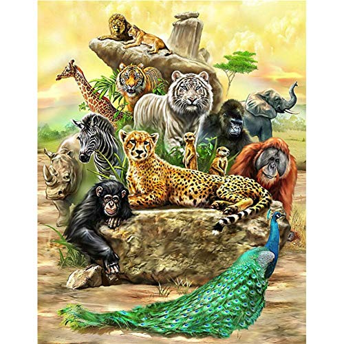 Diamond Painting by Numbers Kits DIY 5D Full Drill África animales salvajes Large Paste Crystal Rhinestone Adults Kids Handmade Embroidery Diamond Art Craft for Home Wall Decor 30x40cm C3123