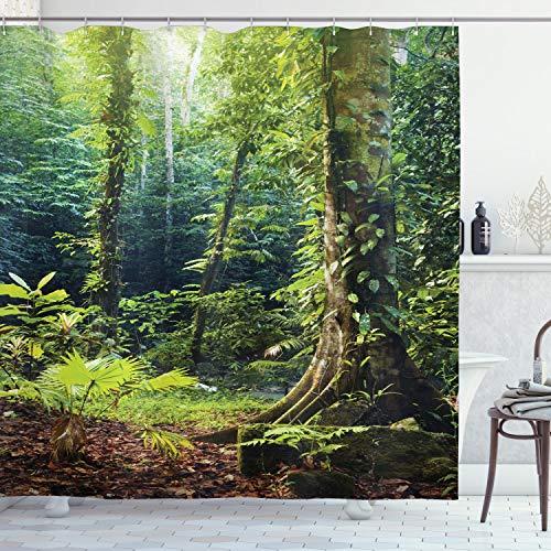 ABAKUHAUS Regenwald Duschvorhang, Wilder Efeu auf Bäumen, mit 12 Ringe Set Wasserdicht Stielvoll Modern Farbfest & Schimmel Resistent, 175x200 cm, Grün braun