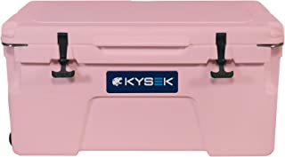 Best lunch ice chest Reviews