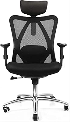 Office Chairs Adjustable Office Chair with Lumbar Support and Rollerblade Wheels - High Back with Breathable Mesh
