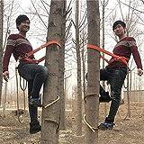 JIEJIE Kletterbäume Artifact, Elektriker Fuß Buckle Kletterbäume Spezialwerkzeug, einfach zu verwenden, Obst Picking (Farbe: 250 Modell) QIANGQIANG (Color : 250 Model)
