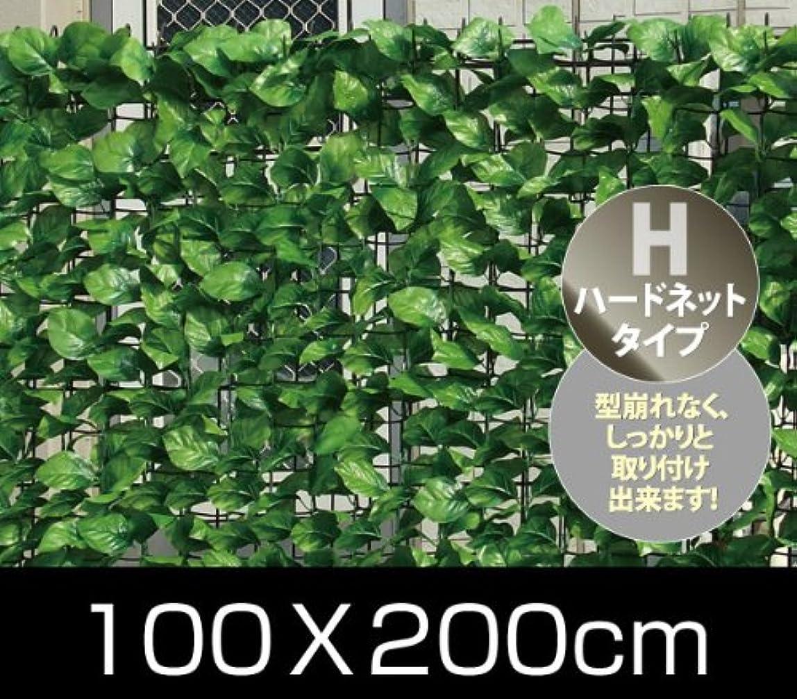 認証アトラス系統的山善(YAMAZEN) リーフラティス 約100×200cm ハードネットタイプ ナチュラルグリーン LLH-12R NG