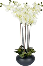 HOMESCAPES Large Oriental Style Cream Orchid with Silk Flowers in Black Round Planter Pot 79 cm tall - Artificial Flowers and Plants for Indoor Decoration