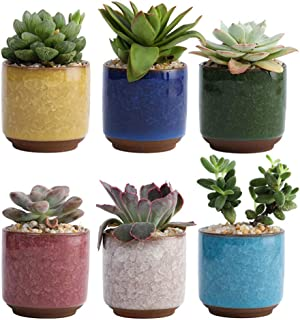 Yardwe 6pcs Small Succulent Planter Succulent Plant Pots Plant Container Small Flowerpot Succulent Container for Store Off...