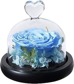 バレンタインギフト永遠に手作りの本物のバラ–記念日のギフトプリザーブドローズ–誕生日プレゼント新鮮な花-美の広告ガールフレンドのためのビーストローズ