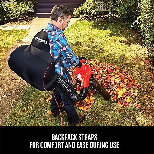 CRAFTSMAN Leaf Blower / Leaf Vacuum & Mulcher, 12-Amp (CMEBL7000)