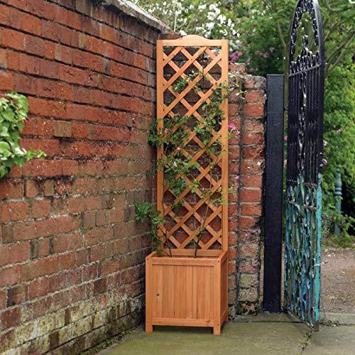 Kingfisher Planter1 Jardinière carrée avec Treillis arrière Fin, Transparent, Taille Unique