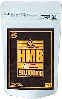 HMB タブレット サプリメント 90000mg (500錠)