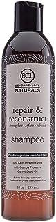 BCL Naturals Repair & Reconstruct Shampoo, 10 Ounce