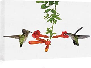 Hummingbirds Decor Canvas Art Wall Decor,Two Hummingbirds Sip Nectar from a Trumpet Vine Blossoms Summertime Painting Wall Art Picture Print on Canvas,24
