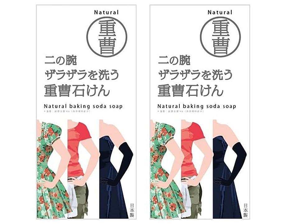 異常ペン十代ニの腕を洗う重曹石鹸 (2個)