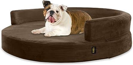 Amazon.es: Sofa Perro