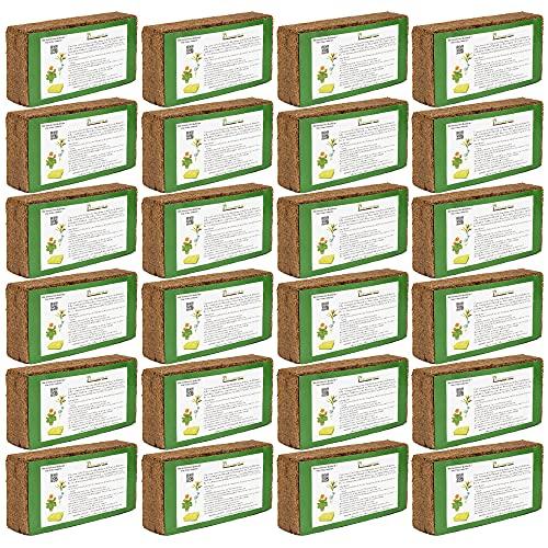 Humusziegel - 210 L Kokoserde - 24 x 650g - Blumenerde aus Kokosfaser - natürlich & torffrei - geeignet als Palmenerde, Erde für Zimmerpflanzen, Chili Erde, Pflanzenerde