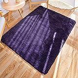 GaoTuo Alfombras Suaves de Terciopelo, alfombras Modernas y esponjosas, Lindas alfombras de Dormitorio peludas, adecuadas para su Uso como alfombras de Dormitorio(púrpura,80x160cm)