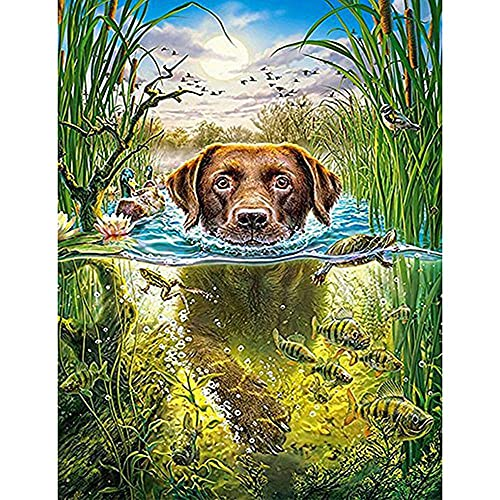 KHDFKFR 5D Diamond Painting Kit Animal Puppy Swimming DIY, Adults Boy Girl Kids Gift Full Drill Crystal Rhinestone Embroidery Cross Stitch Arts Craft for Living Room Home Wall Decor 30X40cm