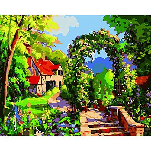 Pintar por Numeros Adultos, DIY Pintura por números Arco de guirnalda con Pinceles y Pinturas Decoraciones para el Hogar sin Marco de 40 X 50 cm