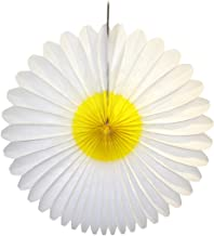 product image for Devra Party 3-Pack 20 Inch Honeycomb Tissue Paper Daisy Flower Fan (White and Yellow)