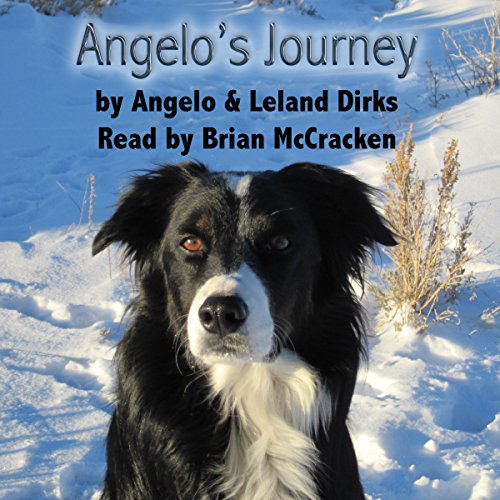 Angelo's Journey: A Border Collie's Quest for Home audiobook cover art