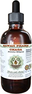 Chaga Alcohol-Free Liquid Extract, Chaga (Inonotus obliquus) Whole Mushroom Dried Glycerite 2 oz