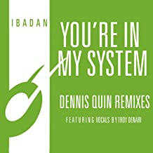 You're in My System (Dennis Quin Club Mix)