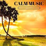 Calm Music - Best Mp3 Collection for Home Massage