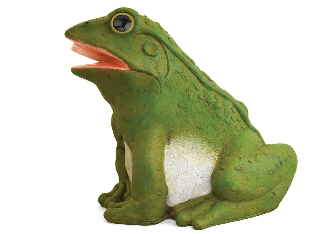 Danner 3765 Pond Master Fountain Frog Spitter