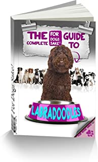 All About Labradoodles - The Complete Guide (English Edition)