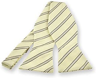TieMart Boys Vanilla Melvin Stripe Clip-On Tie 8 Length