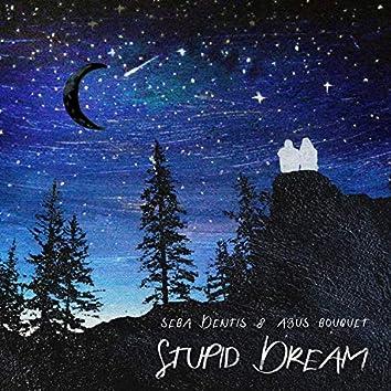 Stupid Dreams
