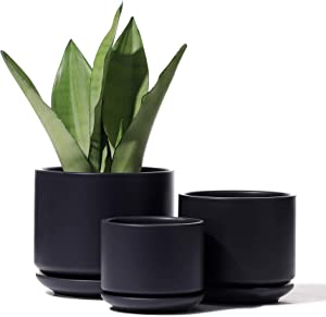 Planters Pots for Plants Indoor - 4+5.5+6.5 Inch Ceramic Planters Bonsai Container with Drainage Holes & Removable Saucers(POTEY 055702, Plants Not Included)