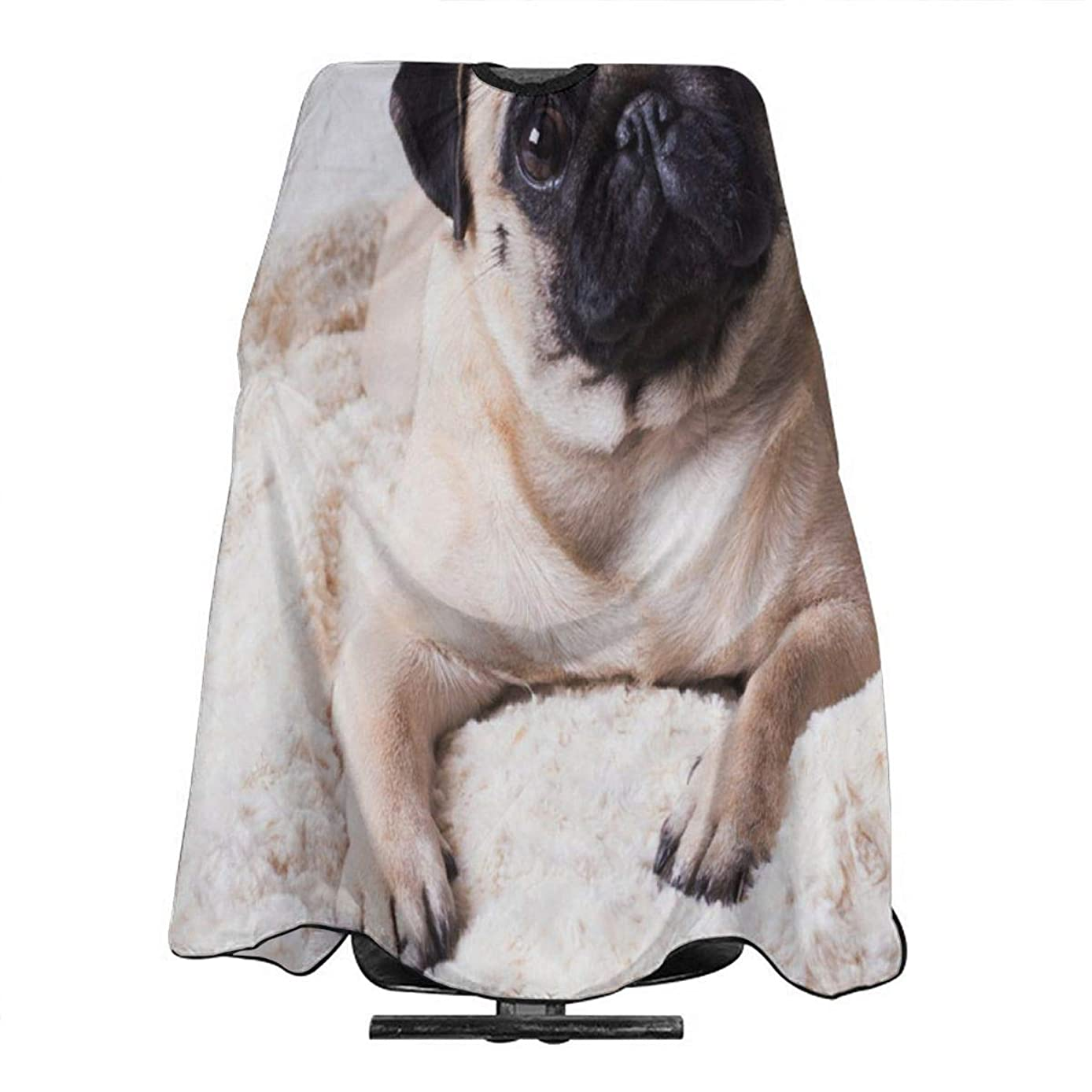 Funny Pug Barber Salon Cape Apron Makeup Comb Out Cape Bib, Salon Hair Dye, Shampoo, Chemical Waterproof Gown Cloth for Adult/Women/Men