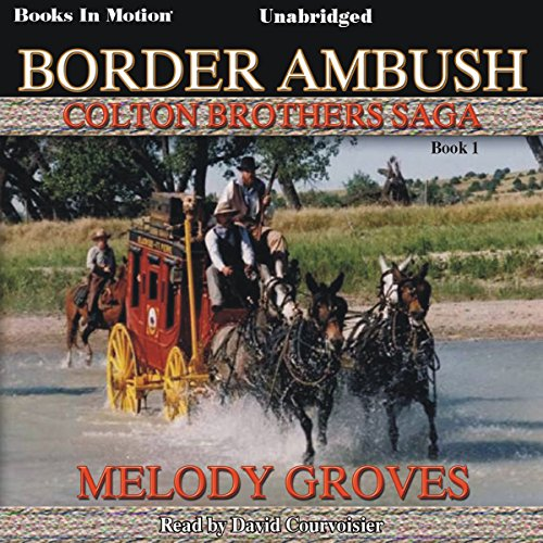 Border Ambush audiobook cover art