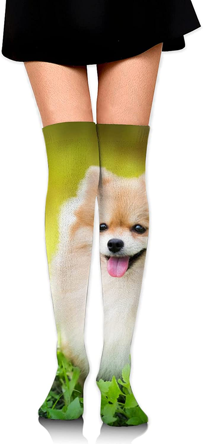 Cute Dog Women Knee Thigh Socks,Suitable for Sport Warm Stocking Boot Sock