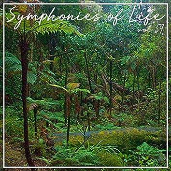 Symphonies of Life, Vol. 59 - Zemlinsky; The King Kandaules