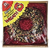 Bird Products/Food Mini Seed/Nuggets With Wreath, Small