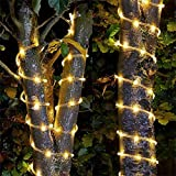 2 Pack Solar Rope Lights Outdoor, 20ft 50 LED Solar Powered String Lights Waterproof & 8 Modes PVC Tube Copper Wire Fairy Lights for Garden Patios Decor