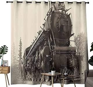 Decor Curtains Steam Engine Antique Northren Express Train Canada Railways Photography Freight Machine Print Black Grey Blackout Draperies for Bedroom Living Room W84 xL84